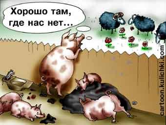chajkovskij-ne-spi-referendum-ne-za-gorami-dumaj-vnikaj-prinimaj-reshenie